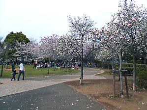 20070401_yatsu