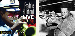 Freddie_live
