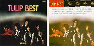 Tulip_best