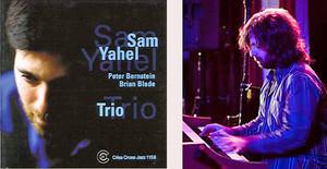 Sam_yahel_trio