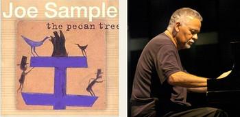 The_pecan_tree